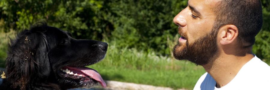 Lezione sulla comunicazione del Cane con Giacomo Faggionato